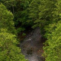 Река Красная :: Игорь Вишняков