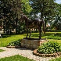 Памятник лошади тракененской породы :: Игорь Вишняков