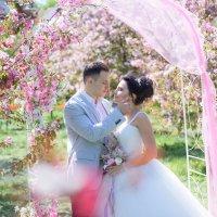 Свадьба в цветущих садах :: Юлия Атаманова
