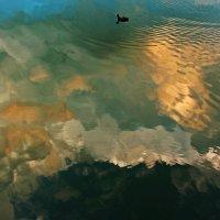 Небо купается :: Alexander Andronik