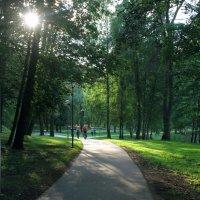 Солнечный день в тенистом парке Друскининкая. :: Николай Карандашев