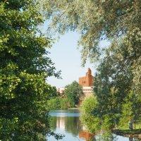 Вечер на озере Разлив 2 :: Виталий