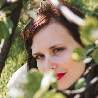 Яблоневый сад :: Анна Самарина