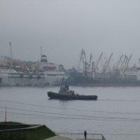 Туманный Владивосток.Залив Золотого Рога. :: Татьяна ❧