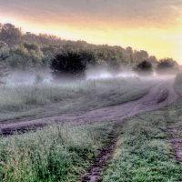 утро.туман :: юрий иванов