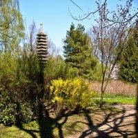 Японский сад :: Владимир Брагилевский