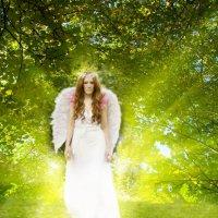Ангел покинутых игрушке :: Анна Кокарева