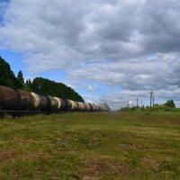 Железная дорога. :: zoja