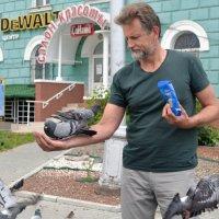 Кормление голубей :: Сергей Черепанов