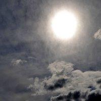 Солнце во мгле :: Наталья Рязанцева