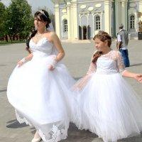 Выбираем невесту. :: Инна Щелокова