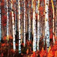 Танцует огненная осень :: Фотогруппа Весна.