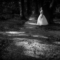 Белое платье невесты :: Татьяна Марченко