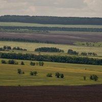 На Арбугинской горе :: Евгений Анисимов