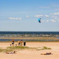 В прохладный день на заливе 2 :: Виталий