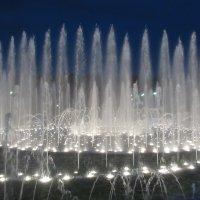 Музыкальный фонтан в Цырицыно :: Татьяна Швырева