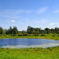 Малые озёра Смоленщины :: Милешкин Владимир Алексеевич