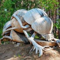 Скульптура из сосны :: Анатолий Иргл