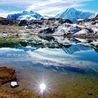 немного солнца в холодной воде :: Elena Wymann