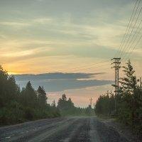 Над болотом туман... :: Дмитрий Костоусов