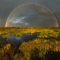 Радуга на болоте. :: Фёдор. Лашков