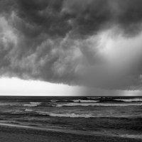 Сезон дождей :: snik ...