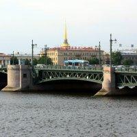 ЛЕТО В САНКТ-ПЕТЕРБУРГЕ :: Николай Гренков