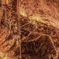 Пещера Гротте Гиганте (Grotta Gigante) 3 :: Василe Мелник