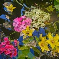 Небо голубое, яркие цветы, Первый месяц лета чудной красоты. :: ALISA LISA