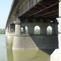 мост :: Дарья Симонова