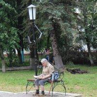 А сзади падали деревья... :: Елена Миронова
