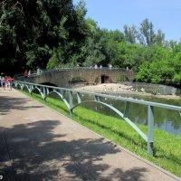 Лето в ростовском зоопарке... :: Нина Бутко