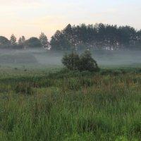 Утренний туман. :: Борис Митрохин