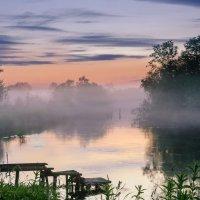 Туман над рекой :: Анна Никонорова