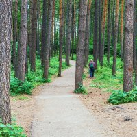 Любитель скандинавской ходьбы :: Любовь Потеряхина