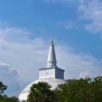 Анурадхапура. Цейлон. Ступа (Дагоба) Руанвели. Anuradhapura. Ceylon. Stupa (Dagoba) Ruanveli. :: Юрий Воронов