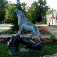 Тамбовский волк :: °•●Елена●•° Аникина♀