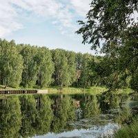 Маленькая протока :: Дмитрий Конев