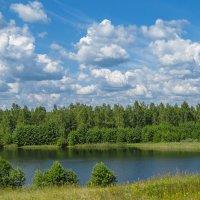 у озера :: Сергей Цветков