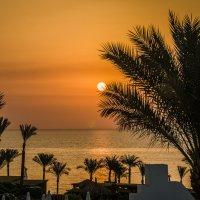 Рассвет  Египет :: Владимир Сысоев