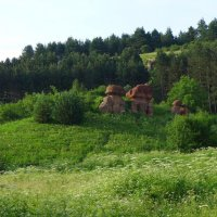 "скалы ""Красные грибы"" :: Evgeniya Alekseeva"