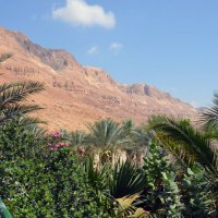 Пейзаж пустыни :: Яков Геллер