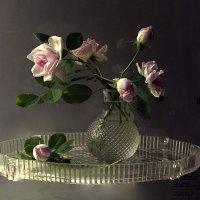 И нежных роз летящий аромат :: veilins veilins