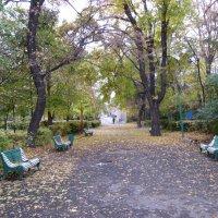 Городской парк :: Volodya Grigoryan