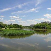 московский пейзаж :: megaden774
