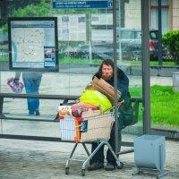 Житель мегаполиса :: Андрей Куприянов