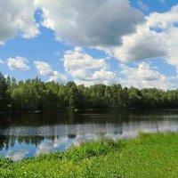 Озеро Среднее :: Владимир Гилясев