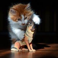 """Реклама фильма ужасов """"...страшнее кошки зверя нет..."""" :: Александр Бойко"""