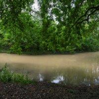 Черная речка (после дождей) :: Игорь Кузьмин