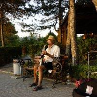 Улечный музыкант :: Kamyshlov Victor